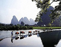 The Beauty of Yangshuo County